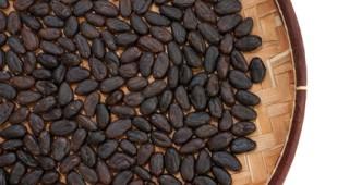 Kakaa se není třeba bát, a to ani v redukčním režimu