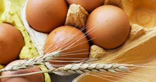 Pro budování svalů sáhněte po vejcích